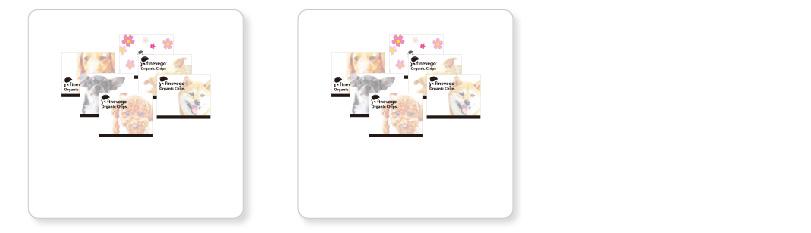 選べるパッケージ6種類 プチギフト