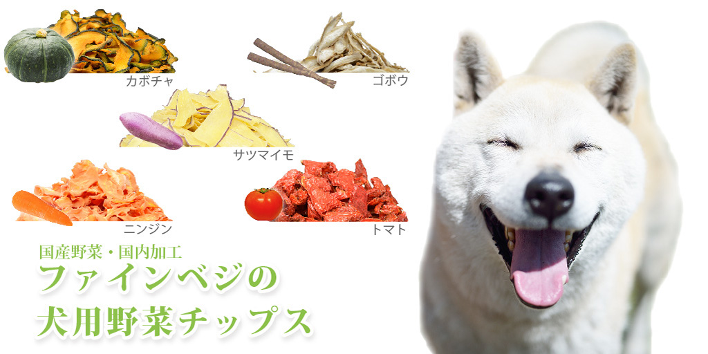 ファインベジの犬用野菜チップス